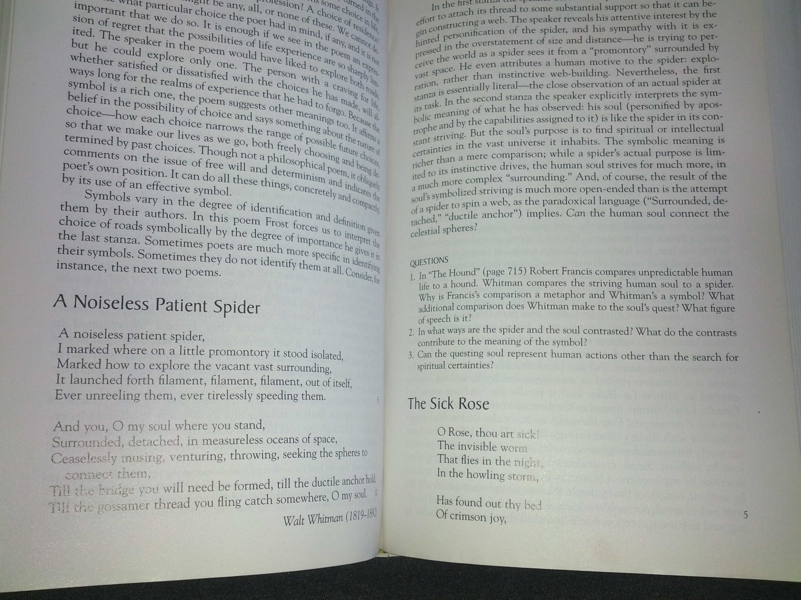 a noiseless patient spider response paper One of the themes explored in the poem a noiseless patient spider by walt  whitman is the search for meaning in life, for sustenance for the soul in this  essay.